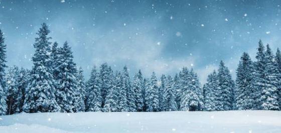 Arboles de navidad modernos y originales nuestra selecci n desde 17 ocio y cultura - Arbol navidad ratan ...