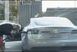Gasolina en un coche eléctrico