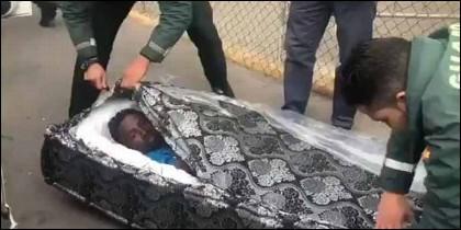 El momento en que la Guardia Civil saca del colchón a uno de los sin papaeles subsaharianos que pretendía cruzar la frontera y entrar así en Melilla.