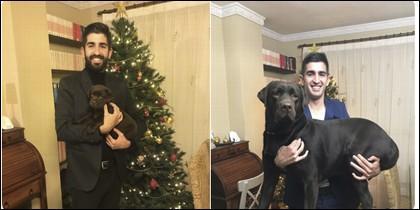 El perro y su dueño