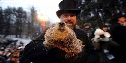 La marmota Phil predice si la primavera llegará pronto a EEUU.
