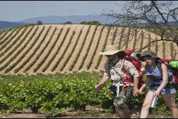 Peregrinos haciendo el Camino de Santiago por el Bierzo