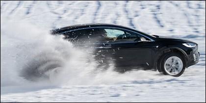 Tesla en la nieve