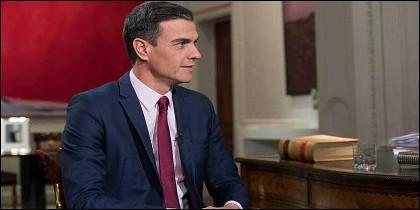 Pedro Sánchez (PSOE) en TVE.
