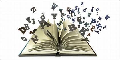 Idioma, lenguaje, palabras, frases, refranes y dichos.