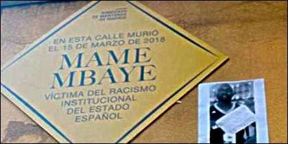 Placa falsa