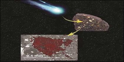 Un asteroide se tragó una porción de material de bloques de construcción cometarios y se conservó dentro de un meteorito.