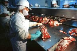 Procesadora de carne