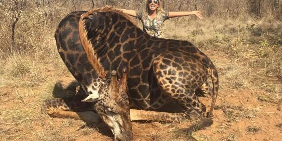 Una yankee mató a una jirafa, y con fotos dijo sentirse