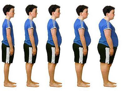 obesidad gordura Caloría química y caloría alimenticia.