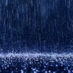 El toro de la lluvia (Victoriola con cuartetos serventesios)