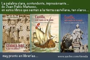 Don Miguel de la Mancha y de Castilla, visto por Mañueco