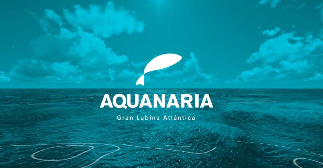 Aquanaria lubina XXL