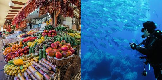 Madeira presenta sus propuestas de mar, naturaleza y secretos por descubrir