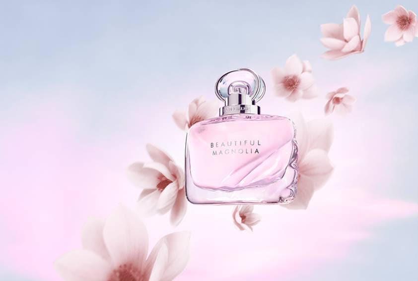 Beautiful Magnolia