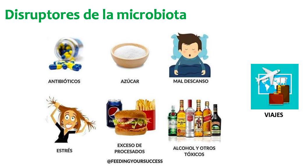 Microbiotica disfunciones