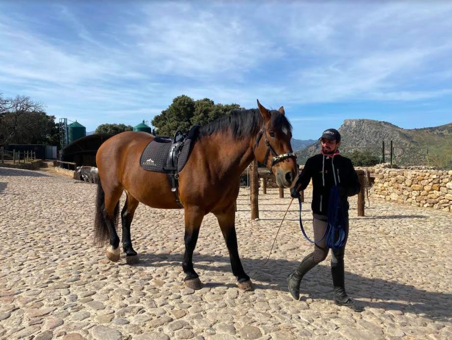La Donaira caballos