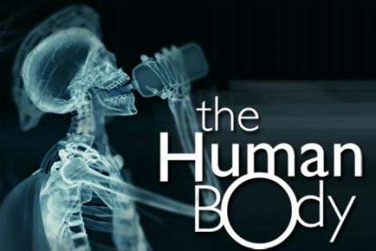 No te pierdas este espectacular documental sobre el interior del cuerpo humano