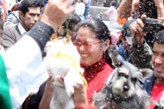 Centenares de mascotas reciben la bendición en iglesia de Lima