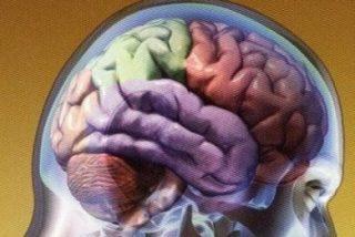 Hallan anormalidades cerebrales en 1 de cada 8 personas sanas