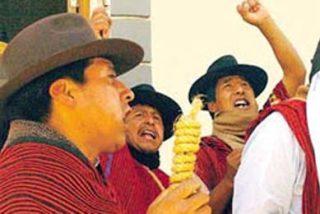 Los aliados de Evo Morales degüellan perros para amenazar