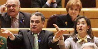 El PP apoyó por error en el Senado que Cataluña sea Estado en Internet