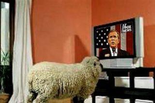 ¿Qué es lo que los españoles vimos en TV en 2006? Pues series americanas como borregos, qué si no
