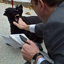 El perro de Bush muerde a un periodista
