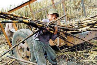 Hoy, toda la publicidad de telefónica luchará contra el trabajo infantil