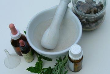 Se crea el primer banco de semillas de plantas medicinales