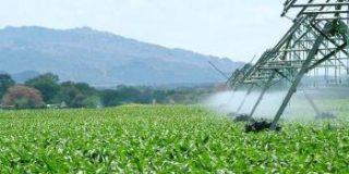 Casi la mitad del agua que consumimos en España es ilegal