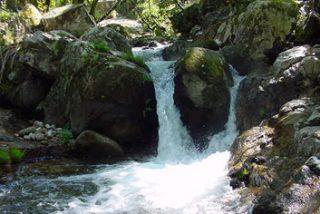 Los ríos españoles han reducido su caudal un 5% en los últimos 20 años