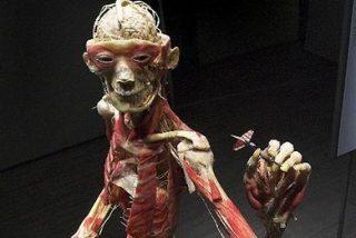 Esculturas de cadáveres a domicilio