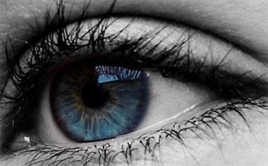 Ojos azules, un mismo antepasado común