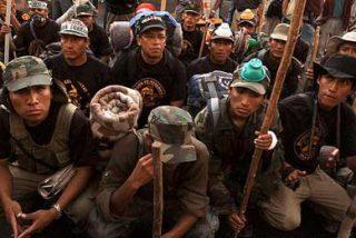 Las Brigadas Bolivarianas en Perú