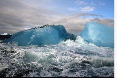 Pingüinos al rescate
