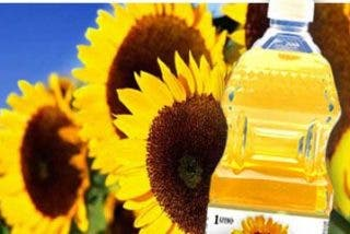 La CE decidirá mañana si toma más medidas para impedir la entrada de aceite de girasol de Ucrania