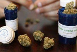 Luz verde al cannabis