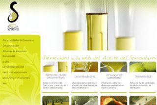 El aceite de Somontano proyecta su calidad a través de Internet