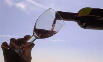 """El vino de calidad es un """"alimento antidepresivo"""""""