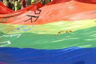La ONU asegura que la homofobia es el 'cómplice' del sida en América Latina