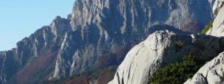 Los Pirineos y los Alpes son las cordilleras mas afligidas por el hombre