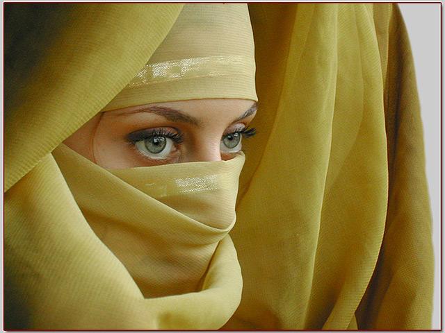 http://blogs.periodistadigital.com/imgs/20080306/velo-islam.jpg