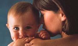 Los órganos de la madre guardan células del hijo con capacidad reparadora