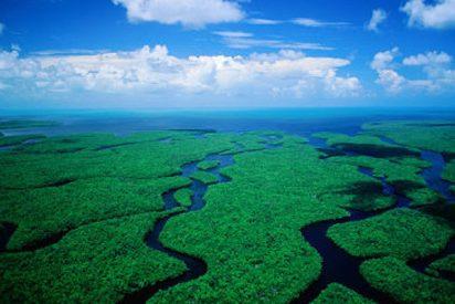 Histórico plan para los Everglades