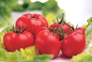 La pasta de tomate puede prevenir el cáncer de próstata
