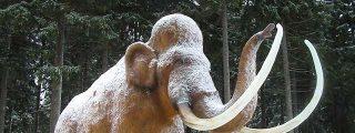 Dos mamuts a los que sólo les falta hablar