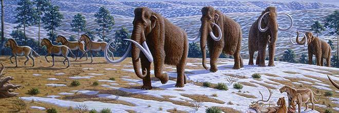 El último mamut del Mediterráneo