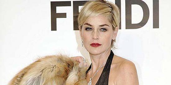 """Los """"defensores de los animales"""" quieren hacerle un scanner cerebral a Sharon Stone"""