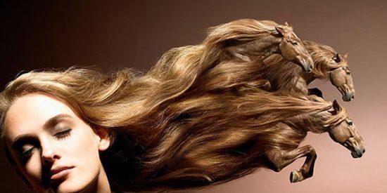 Cuidado básico del cabello
